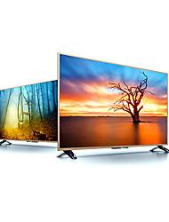 Television & Computer Monito...