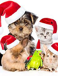 Pet Christmas Costumes