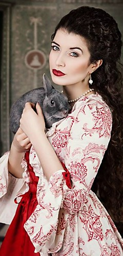 povoljno -Marie Antoinette Rococo Viktoriánus Srednjovjekovni Renesansa 18. stoljeće Haljine Krinolina Žene Kostim Srebrna / Svijetlo siva Vintage Cosplay Party Prom 3/4 rukava Do poda Dugi Duljina Krinolina