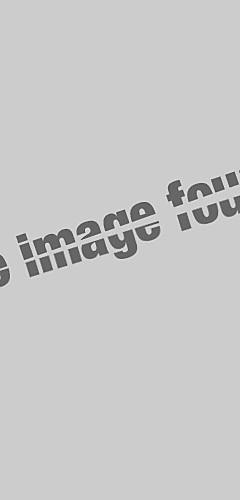 ราคาถูก -สำหรับผู้หญิง เสื้อสตรี Street Chic ตารางไขว้ ลายจุด / สีพื้น สีดำ