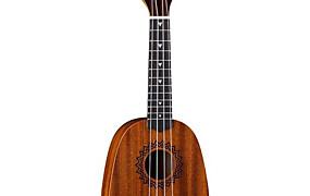 Glazbeni instrumenti