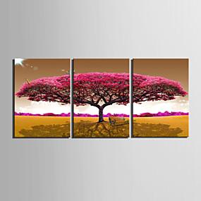 preiswerte Aufgespannte Leinwandrucke-Druck Gerollte Leinwand - Blumenmuster / Botanisch Modern Drei Paneele Kunstdrucke