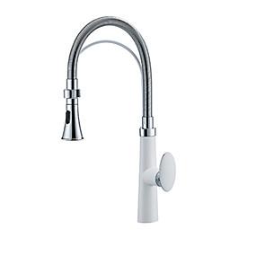 preiswerte Kitchen & Bathroom-Armatur für die Küche - Einhand Ein Loch Lackierte Oberflächen Hoch / High-Arc Andere Moderne Kitchen Taps
