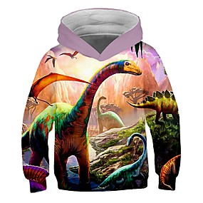 cheap Kids 3D Fashion-Kids Toddler Boys' Active Street chic Color Block 3D Cartoon Print Long Sleeve Hoodie & Sweatshirt Rainbow