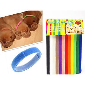 cheap Dog Collars, Harnesses & Leashes-Cat Dog Collar Adjustable / Retractable Rainbow Nylon Rainbow 1 set