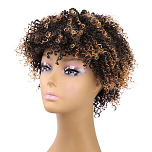 cheap Synthetic Lace Wigs-Synthetic Wig Curly Afro Curly Afro Wig Short Brown Synthetic Hair Women's Brown