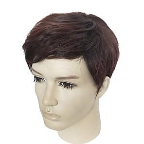 Недорогие Парик из искусственных волос без шапочки-Парики из искусственных волос Естественные прямые Естественные прямые Парик Короткие Бежевый Искусственные волосы Муж. Коричневый