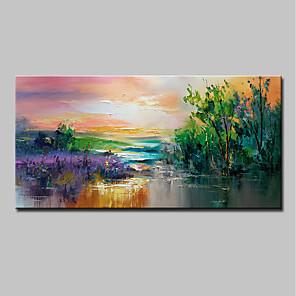 cheap Landscape Paintings-Oil Painting Hand Painted - Landscape / Floral / Botanical Modern Canvas