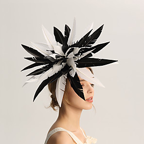 cheap Ballroom Dancewear-Flax / Feathers Fascinators with Feather 1pc Wedding / Special Occasion / Horse Race Headpiece