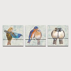 cheap Framed Arts-Print Stretched Canvas Prints - Animals Birds Modern Three Panels Art Prints