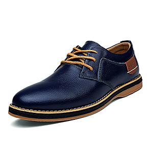 cheap Men's Oxfords-Men's Comfort Shoes Cowhide Fall & Winter Oxfords Black / Blue