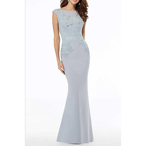 cheap Evening Dresses-Mermaid / Trumpet Mother of the Bride Dress Elegant Jewel Neck Floor Length Lace Polyester Sleeveless with Beading Appliques 2020