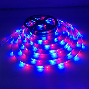 cheap LED Strip Lights-KWB 5m LED Light Strips RGB Tiktok Lights 300 LEDs 2835 SMD 8mm 1pc RGB Decorative Self-adhesive 12 V