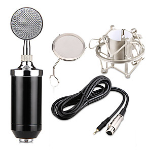 cheap Digital Voice Recorders-Professional BM 8000 Sound Studio Recording Condenser Microphone with 3.5mm Plug Stand Holder for Personal Audio Recording KTV