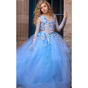 cheap Movie & TV Theme Costumes-Ball Gown Sweep / Brush Train Wedding Flower Girl Dresses - Tulle Long Sleeve Illusion Neck with Pick Up Skirt / Appliques