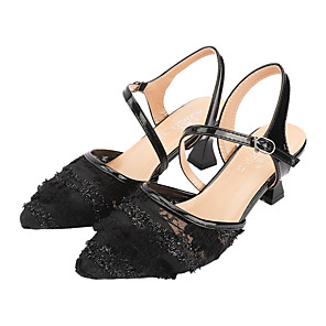 cheap Women's Sandals-Women's Sandals Chunky Heel Pointed Toe Lace / Mesh Sexy Summer Black / Beige