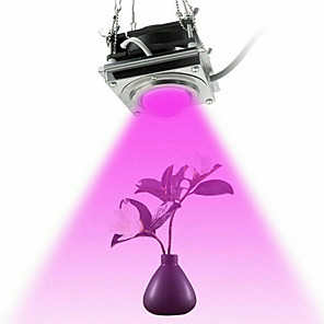 cheap Plant Growing Lights-Grow Light LED Plant Growing Light COB Full Spectrum Professional Grow Light 60W Grow Tent Greenhouse Planting Hydroponics Grow Lamp