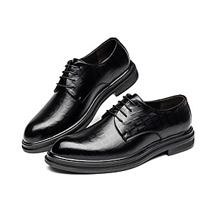 cheap Outdoor IP Network Cameras-Men's Summer / Fall Business / Casual Daily Oxfords Leather Non-slipping Height-increasing Wear Proof Black