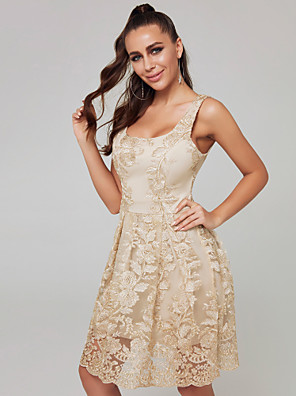 cheap Cocktail Dresses-A-Line Sexy Cocktail Party Dress Scoop Neck Sleeveless Short / Mini Lace with Lace Insert 2020