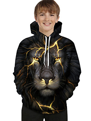 cheap Boys' Tops-Kids Toddler Boys' Active Basic Lion Geometric Color Block 3D Print Long Sleeve Hoodie & Sweatshirt Black