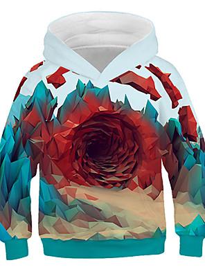 cheap Flower Girl Dresses-Kids Boys' Basic Print 3D Long Sleeve Hoodie & Sweatshirt Rainbow