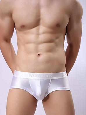 cheap Men's Exotic Underwear-Men's Mesh / Basic Briefs Underwear Low Waist Light Blue Purple Blushing Pink S M L