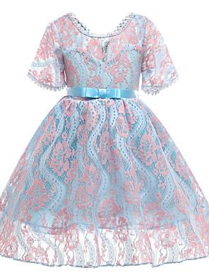 cheap Girls' Dresses-Kids Toddler Girls' Basic Cute Floral Lace Short Sleeve Knee-length Dress Blue