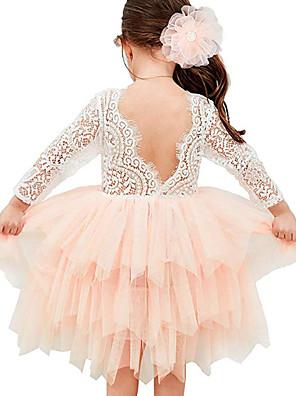 povoljno Haljine za djevojčice-Djeca Dijete koje je tek prohodalo Djevojčice Aktivan Slatka Style Color block Čipka Mrežica Čipka Trim 3/4 rukava Asimetričan Haljina Blushing Pink