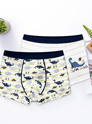 cheap Boys' Clothing Sets-2 Piece Kids Boys' Basic Dinosaur Print Underwear & Socks White