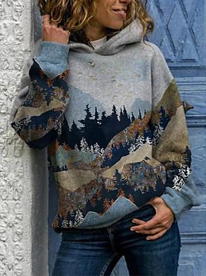 cheap Women's Blouses & Shirts-Women's Sports Pullover Hoodie Sweatshirt Scenery Basic Hoodies Sweatshirts  Blue Gray
