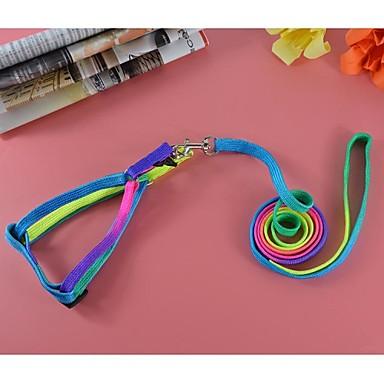 mode färgstarka nylon bly och sele set för hundar och husdjur (blandade färger, storlek)
