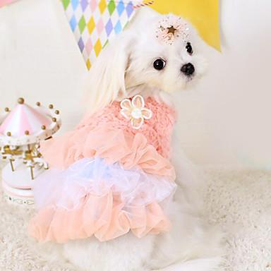 Hund Klänningar Hundkläder Blå Rosa Cotton Kostym Till Vår & Höst Herr Dam Mode