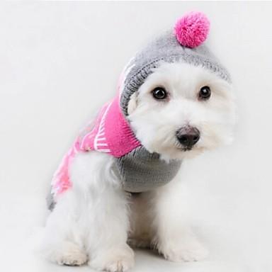 Katt Hund Tröjor Huvtröjor Hundkläder Färgblock Rosa Cotton Kostym Till Vår & Höst Vinter Herr Dam Ledigt / vardag