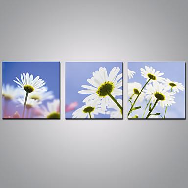Gerdirilmiş Tuval Resmi çiçekbotanik Modernüç Panelli Kanvas Yatay