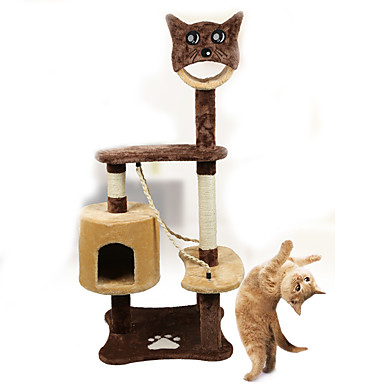 cat genny scanner