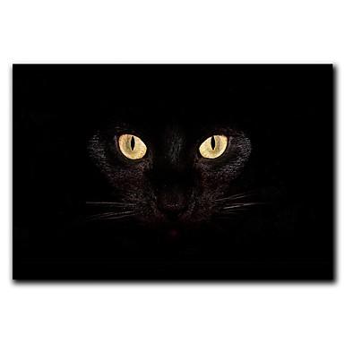 Černá francouzská kočička