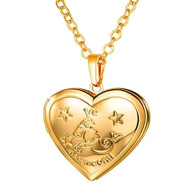 levne Dámské šperky-Dámské Náhrdelníky s přívěšky Dlouhé Zvěrokruh Ryté Medailónek Kozoroh dámy Romantické Módní Měď Zlatá Stříbrná 55 cm Náhrdelníky Šperky 1ks Pro Dar Denní