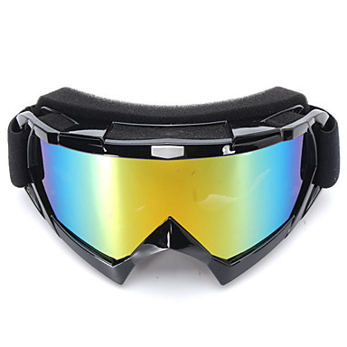 povoljno Motori i quadovi-Uniseks Motociklističke naočale Sportske Vjetronepropusnost / Prašinu / Otpornost na udarce Plastika / ABS + PC