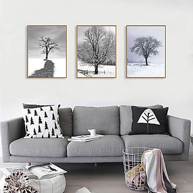 Impressão de Arte Emoldurada Conjunto Emoldurado - Paisagem Botânico Poliestireno Fotografias Arte de Parede