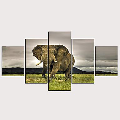 Trykk Valset lerretskunst - Dyr Klassisk Moderne Fem Paneler Kunsttrykk