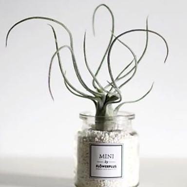 Flores artificiais 1 Ramo Clássico Contemporâneo Moderno Plantas suculentas Flor de Mesa