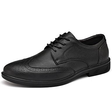 Ανδρικά Bullock Παπούτσια Νάπα Leather Ανοιξη καλοκαίρι Κλασσικό / Καθημερινό Oxfords Μη ολίσθηση Μαύρο / Σκούρο καφέ