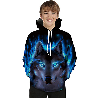 cheap Boys' Hoodies & Sweatshirts-Kids Toddler Boys' Active Basic Wolf Color Block 3D Animal Print Long Sleeve Hoodie & Sweatshirt Blue