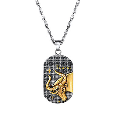 levne Pánské šperky-Pánské Dámské Náhrdelníky s přívěšky Náhrdelník Charm náhrdelník Zvěrokruh Taurus Gemini Módní Titanová ocel Stříbrná 60 cm Náhrdelníky Šperky 1ks Pro Promoce Dar Denní Škola