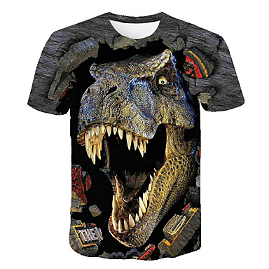 cheap Boys' Tops-Kids Boys' Basic Street chic Dinosaur Color Block 3D Animal Print Short Sleeve Tee Rainbow