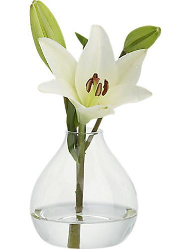 preiswerte Spezial Angebote-Material / Glas Tabelle Zentrum Stück - Nicht-individualisiert Vasen / Anderen / Tische Ganzjährig