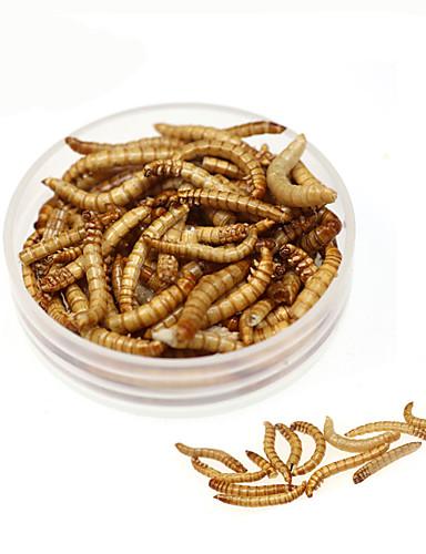 preiswerte Angelvergnügen mit der Familie-1 pcs Fischköder Würmer sinkend Bass Forelle Pike Karpfenangeln Weicher Kunststoff