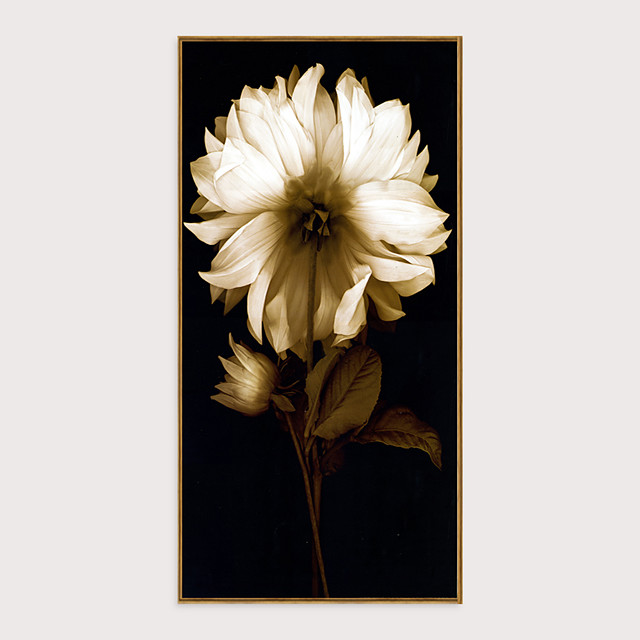 Framed Art Print Framed Set - Still Life Floral / Botanical PS Photo Wall Art
