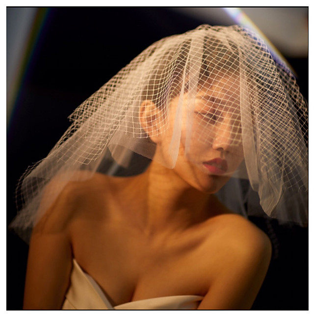 Two-tier Lace Wedding Veil Blusher Veils with Solid 15.75 in (40cm) POLY