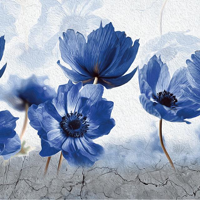 Plants Flowers Window Film & Stickers Decoration Matte / Floral Floral / Geometric PVC(PolyVinyl Chloride) Matte Sticker / Window Sticker / New Design